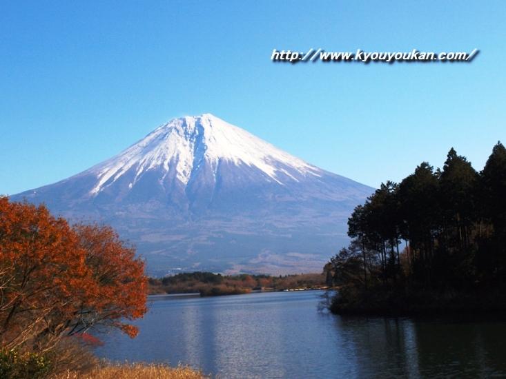 富士山の画像 p1_20